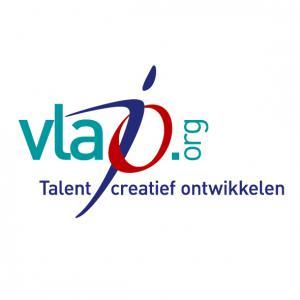 Vlaamse Jonge Ondernemingen – Vlajo vzw